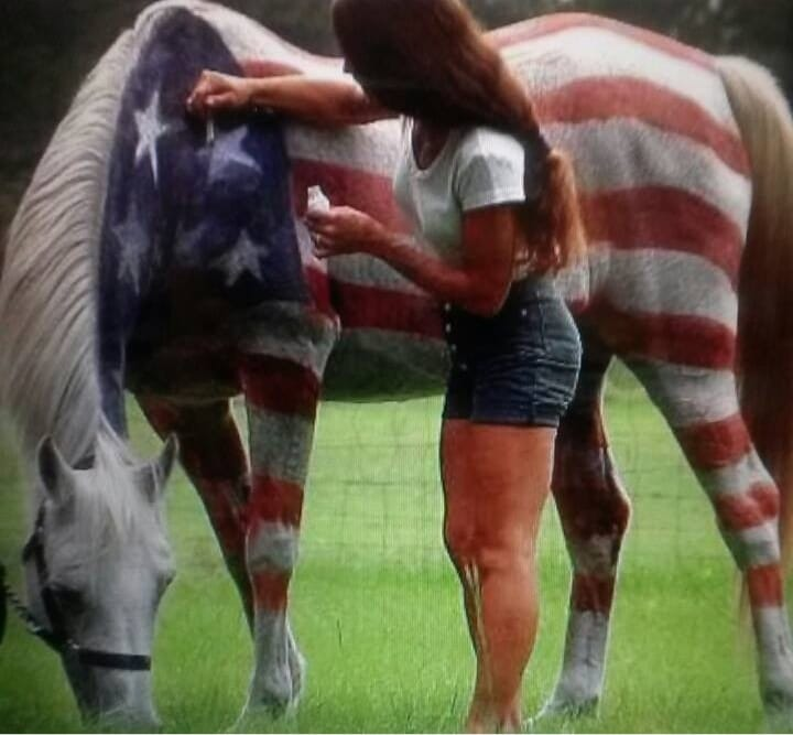 Horses, Parades and A Happy Fourth Of July