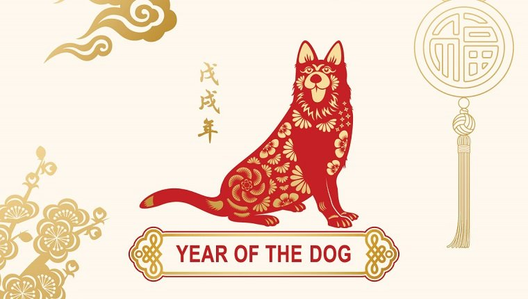 Year of the Dog's Strong Start Bodes Well for Chinese Stocks